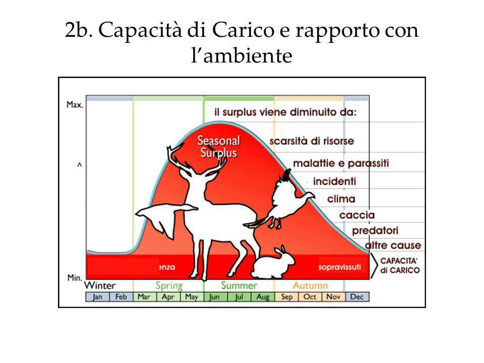 2b. Capacità di Carico e rapporto con lambiente