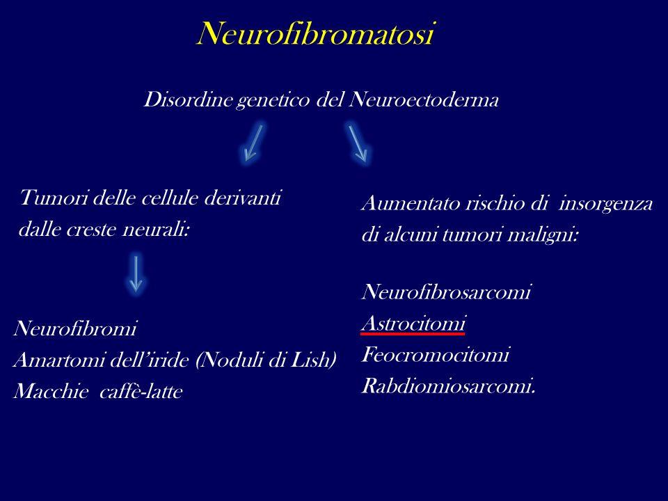 Neurofibromatosi Disordine genetico del Neuroectoderma Tumori delle cellule derivanti dalle creste neurali: Neurofibromi Amartomi delliride (Noduli di