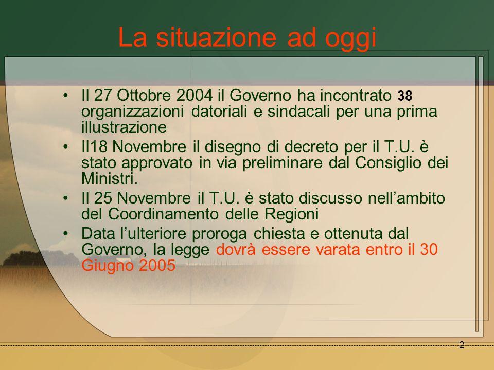 2 La situazione ad oggi Il 27 Ottobre 2004 il Governo ha incontrato 38 organizzazioni datoriali e sindacali per una prima illustrazione Il18 Novembre