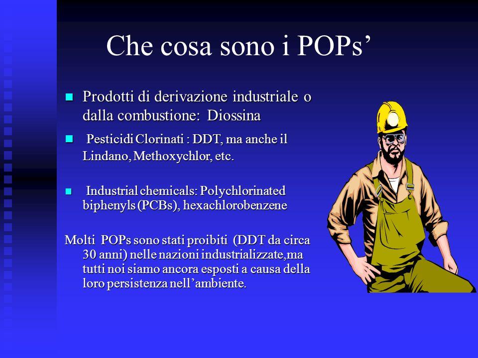 Che cosa sono i POPs Prodotti di derivazione industriale o dalla combustione: Diossina Prodotti di derivazione industriale o dalla combustione: Diossi