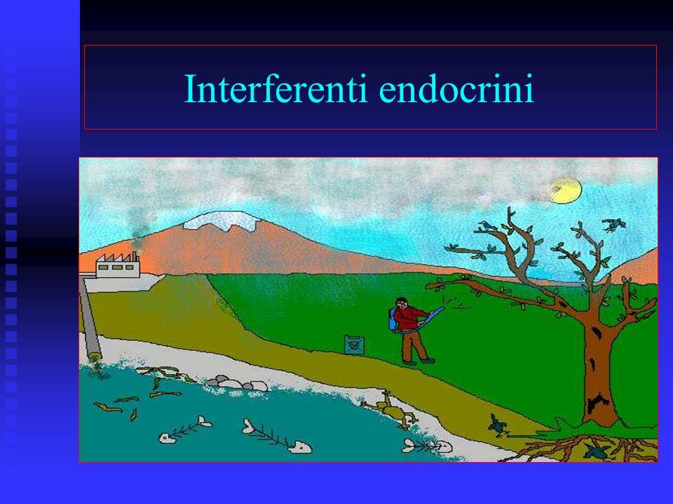 Cosa sono gli inteferenti endocrini.