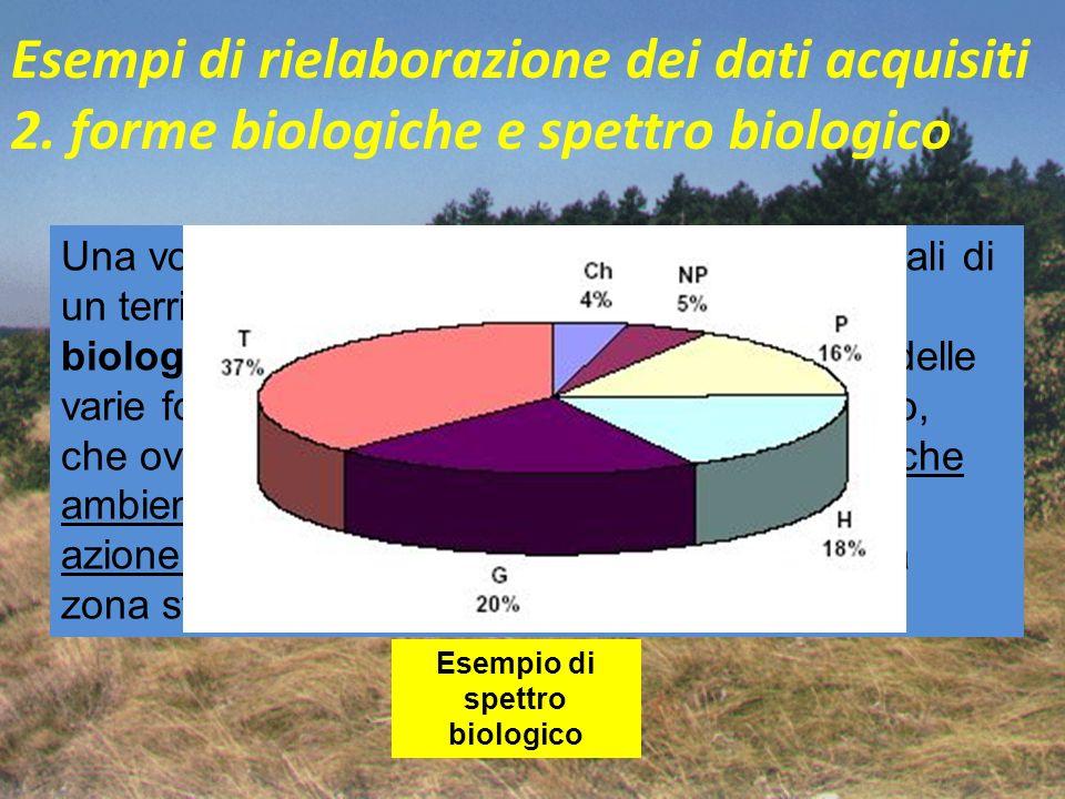 Esempi di rielaborazione dei dati acquisiti 2. forme biologiche e spettro biologico Una volta esaminato il numero di specie vegetali di un territorio