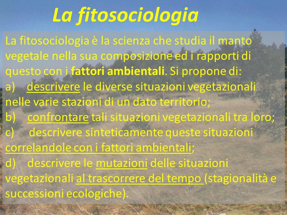 Il rilievo fitosociologico 1) data e località del rilievo; 2) nome del rilevatore; 4) riferimenti topografici e quota s.l.m.