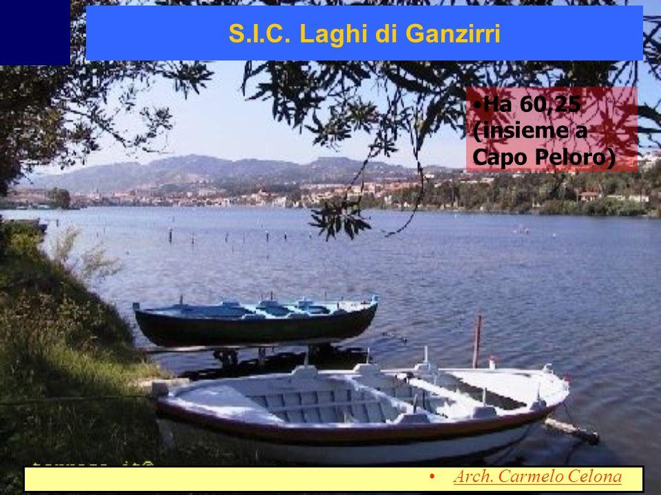Ha 60,25 (insieme a Capo Peloro) S.I.C. Laghi di Ganzirri Arch. Carmelo Celona