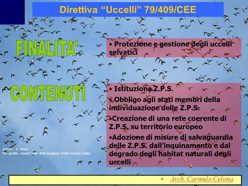 Direttiva Uccelli 79/409/CEE Protezione e gestione degli uccelli selvatici Istituzione Z.P.S. Obbligo agli stati membri della individuazione delle Z.P