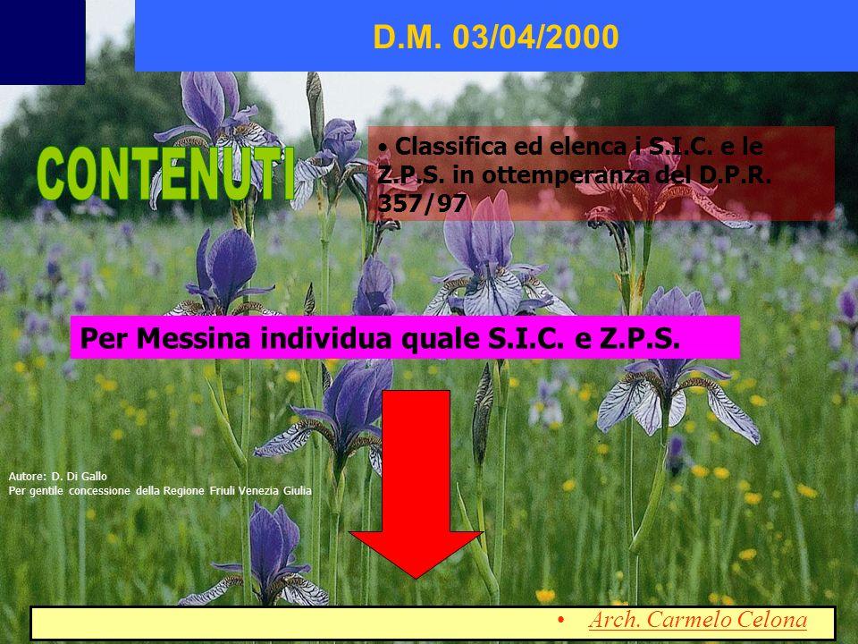 Classifica ed elenca i S.I.C. e le Z.P.S. in ottemperanza del D.P.R. 357/97 D.M. 03/04/2000 Per Messina individua quale S.I.C. e Z.P.S. Arch. Carmelo