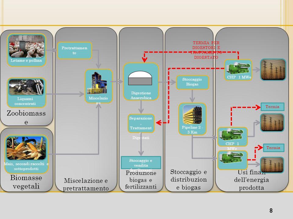 Zoobiomass e Letame e pollina Liquami concentrati Biomasse Biomasse vegetali Biomasse Biomasse vegetali Mais, secondi raccolti e sottoprodotti Miscela