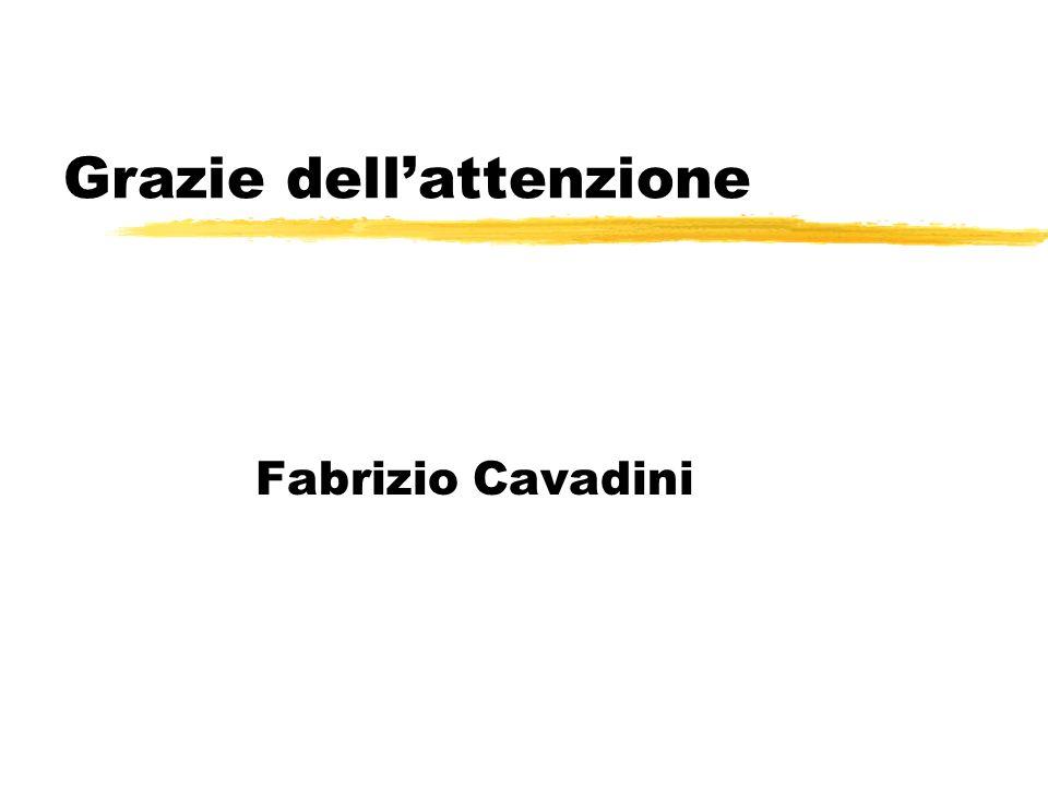 Grazie dellattenzione Fabrizio Cavadini
