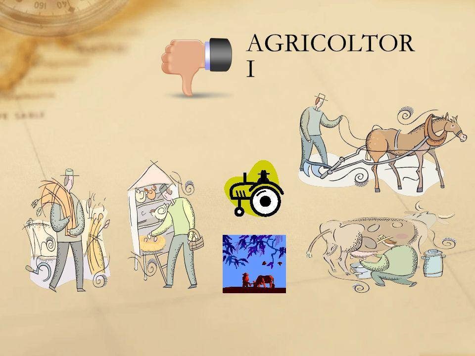 AGRICOLTOR I