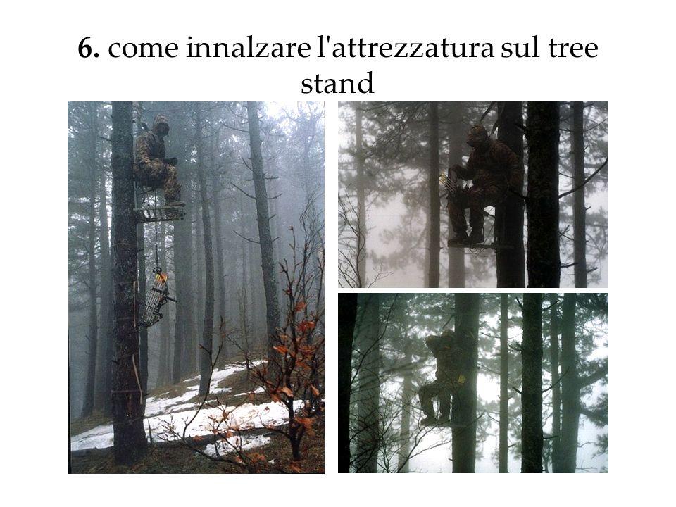 6. come innalzare l'attrezzatura sul tree stand