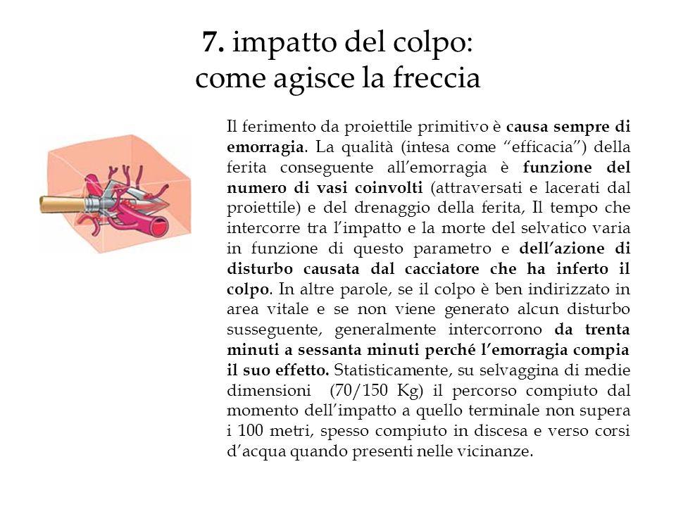 7. impatto del colpo: come agisce la freccia Il ferimento da proiettile primitivo è causa sempre di emorragia. La qualità (intesa come efficacia) dell