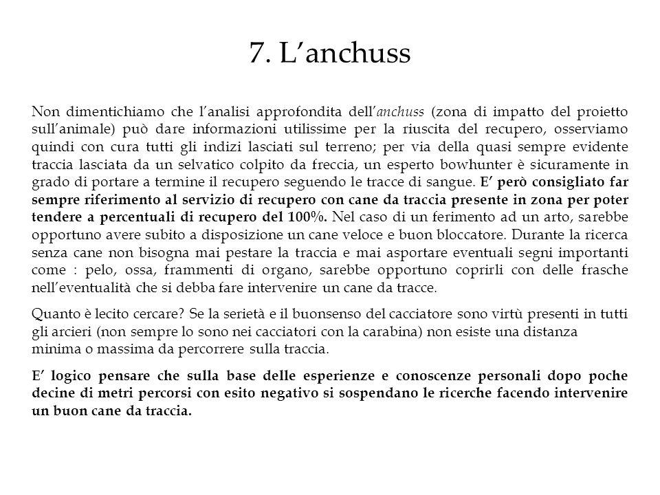 7. Lanchuss Non dimentichiamo che lanalisi approfondita dell anchuss (zona di impatto del proietto sullanimale) può dare informazioni utilissime per l