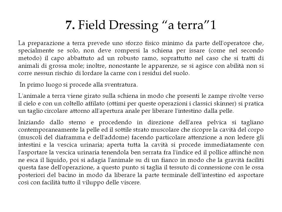 7. Field Dressing a terra1 La preparazione a terra prevede uno sforzo fisico minimo da parte dell'operatore che, specialmente se solo, non deve romper
