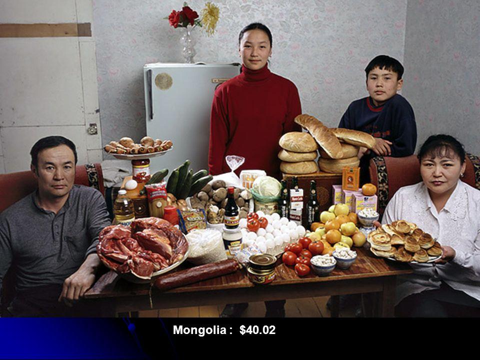 Mongolia : $40.02