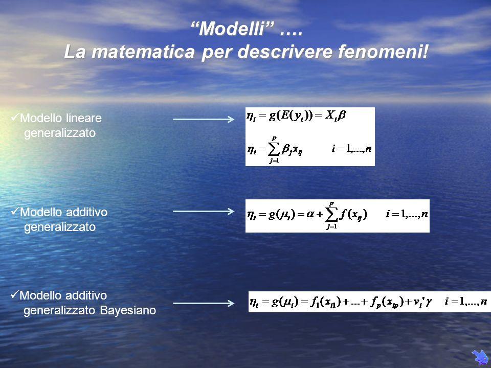 Modelli …. La matematica per descrivere fenomeni! Modello lineare generalizzato Modello additivo generalizzato Modello additivo generalizzato Bayesian