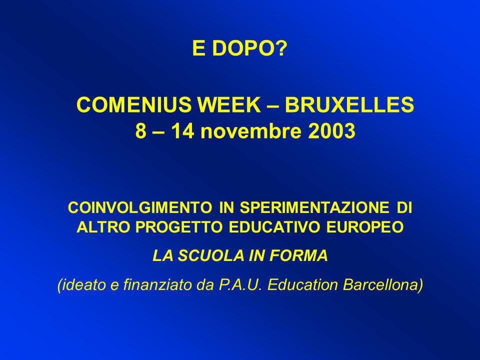 E DOPO? COMENIUS WEEK – BRUXELLES 8 – 14 novembre 2003 COINVOLGIMENTO IN SPERIMENTAZIONE DI ALTRO PROGETTO EDUCATIVO EUROPEO LA SCUOLA IN FORMA (ideat