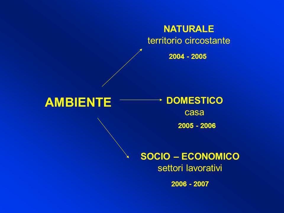 AMBIENTE NATURALE territorio circostante DOMESTICO casa SOCIO – ECONOMICO settori lavorativi 2004 - 2005 2005 - 2006 2006 - 2007