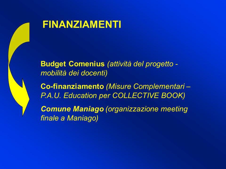 FINANZIAMENTI Budget Comenius (attività del progetto - mobilità dei docenti) Co-finanziamento (Misure Complementari – P.A.U. Education per COLLECTIVE