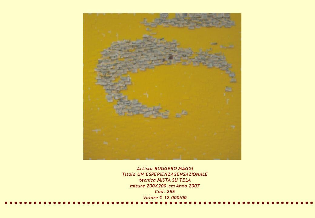 Artista RUGGERO MAGGI Titolo UNESPERIENZA SENSAZIONALE tecnica MISTA SU TELA misure 200X200 cm Anno 2007 Cod. 255 Valore 12.000/00