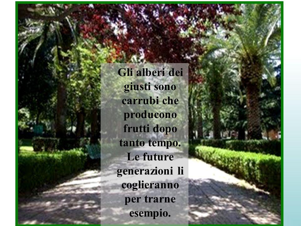 Gli alberi dei giusti sono carrubi che producono frutti dopo tanto tempo. Le future generazioni li coglieranno per trarne esempio.