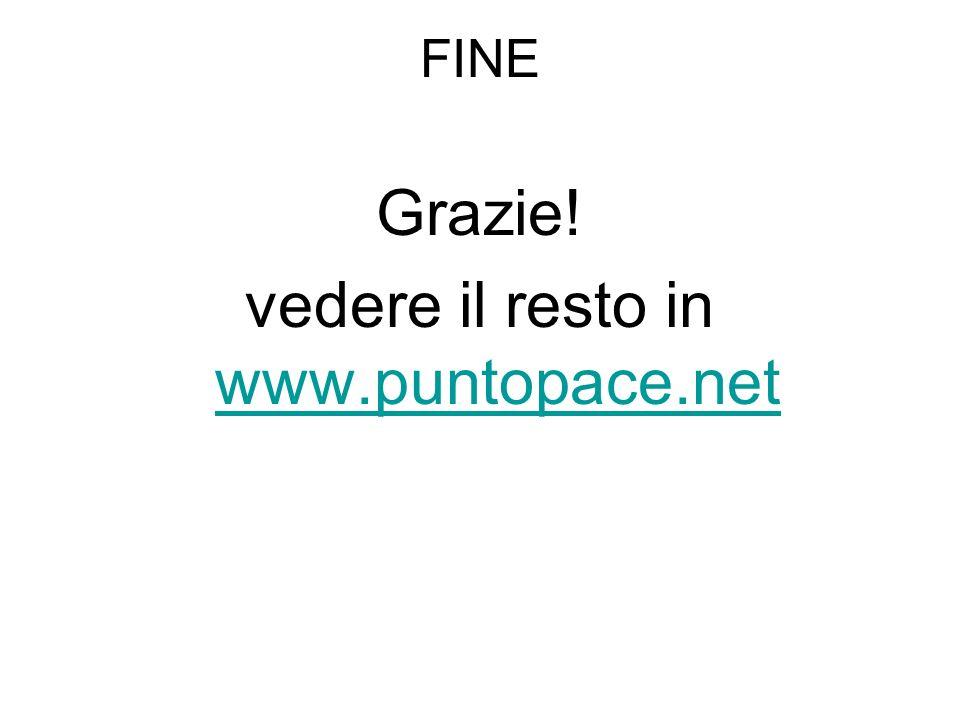 FINE Grazie! vedere il resto in www.puntopace.net www.puntopace.net