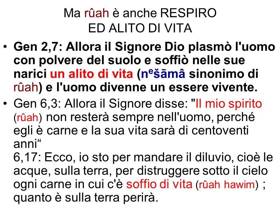 Ma rûah è anche RESPIRO ED ALITO DI VITA Gen 2,7: Allora il Signore Dio plasmò l'uomo con polvere del suolo e soffiò nelle sue narici un alito di vita