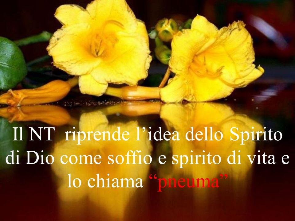 3) Lo Spirito Santo e Gesù Nello spirito umano agisce lo Spirito di Dio, che lo sollecita e muove Mt 5,3: Beati i poveri in spirito, perché di essi è il regno dei cieli.
