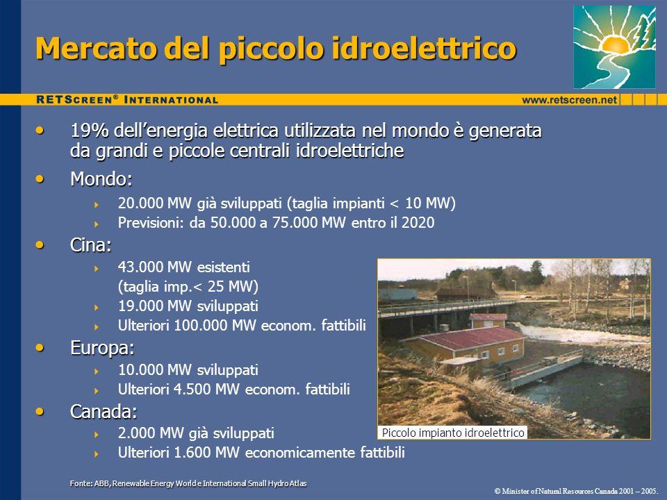 Mercato del piccolo idroelettrico 19% dellenergia elettrica utilizzata nel mondo è generata da grandi e piccole centrali idroelettriche 19% dellenergi