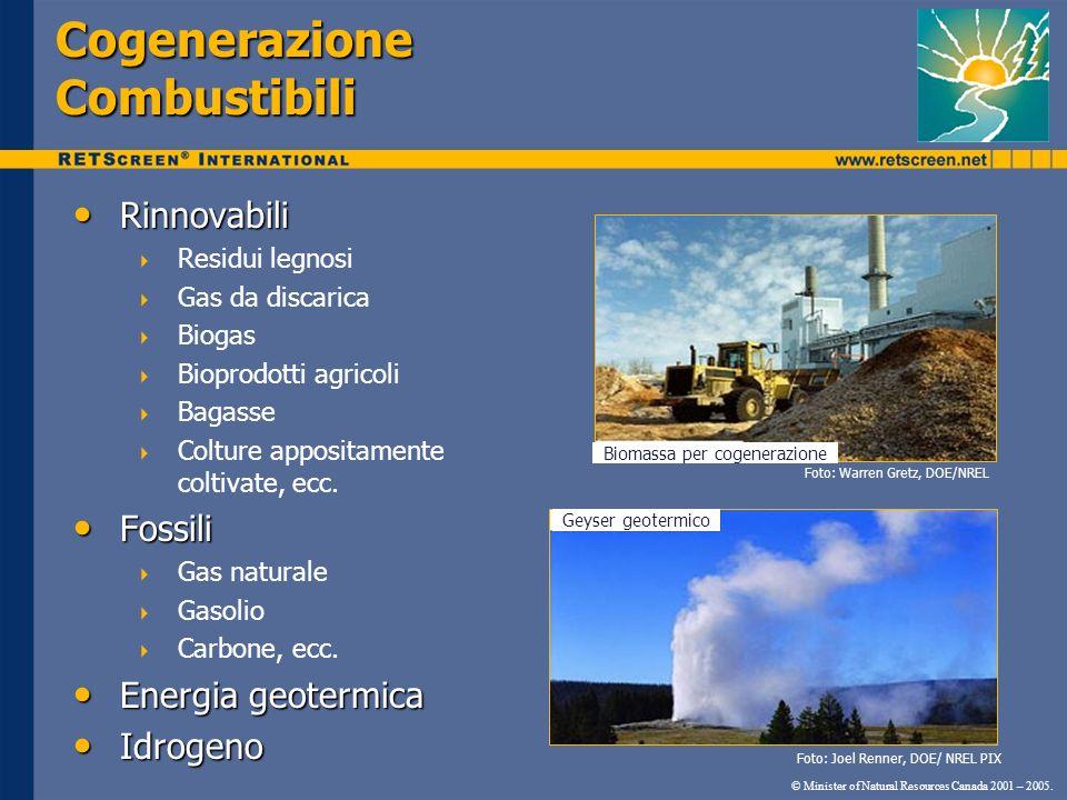 Cogenerazione Combustibili © Minister of Natural Resources Canada 2001 – 2005. Rinnovabili Rinnovabili Residui legnosi Gas da discarica Biogas Bioprod