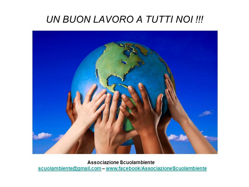 UN BUON LAVORO A TUTTI NOI !!! Associazione Scuolambiente scuolambiente@gmail.com – www.facebook/AssociazioneScuolambientescuolambiente@gmail.comwww.f