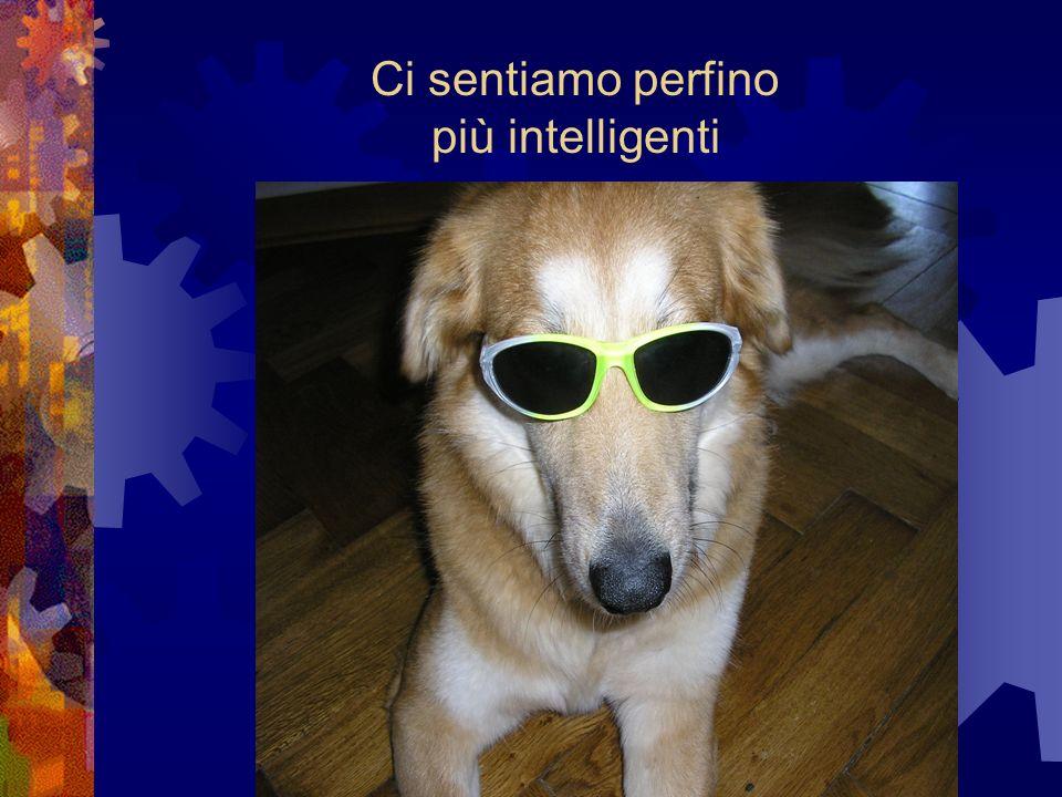 Ci sentiamo perfino più intelligenti