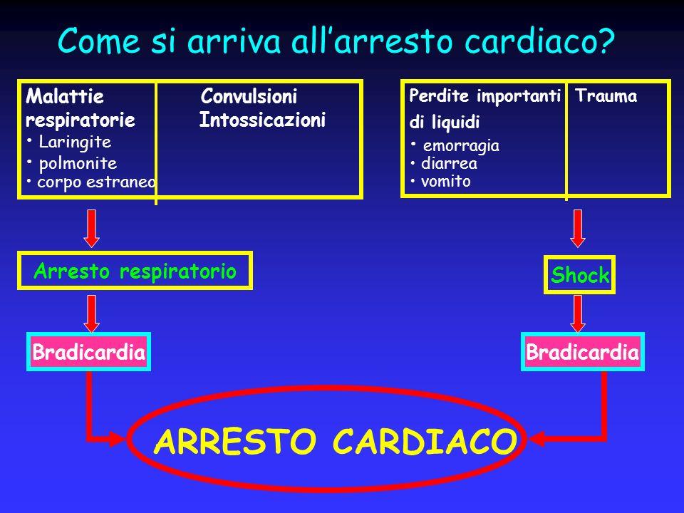 Come si arriva allarresto cardiaco? Malattie Convulsioni respiratorie Intossicazioni Laringite polmonite corpo estraneo Perdite importanti Trauma di l