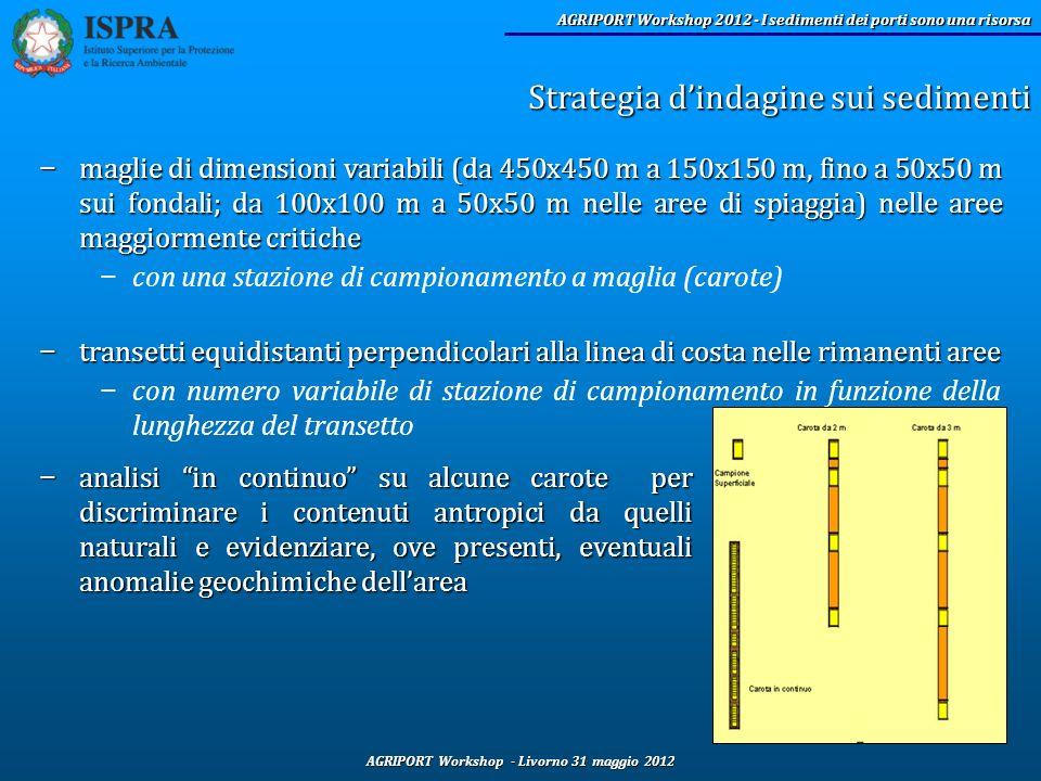 AGRIPORT Workshop - Livorno 31 maggio 2012 AGRIPORT Workshop 2012 - I sedimenti dei porti sono una risorsa maglie di dimensioni variabili (da 450x450