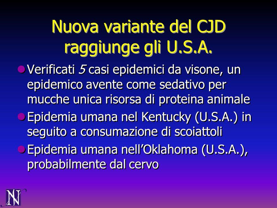 Nuova variante del CJD raggiunge gli U.S.A. Verificati 5 casi epidemici da visone, un epidemico avente come sedativo per mucche unica risorsa di prote