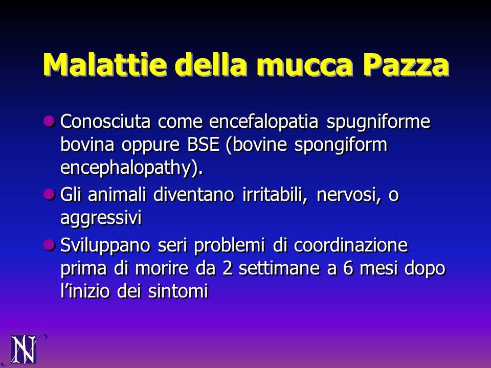 Malattie della mucca Pazza Conosciuta come encefalopatia spugniforme bovina oppure BSE (bovine spongiform encephalopathy). Gli animali diventano irrit