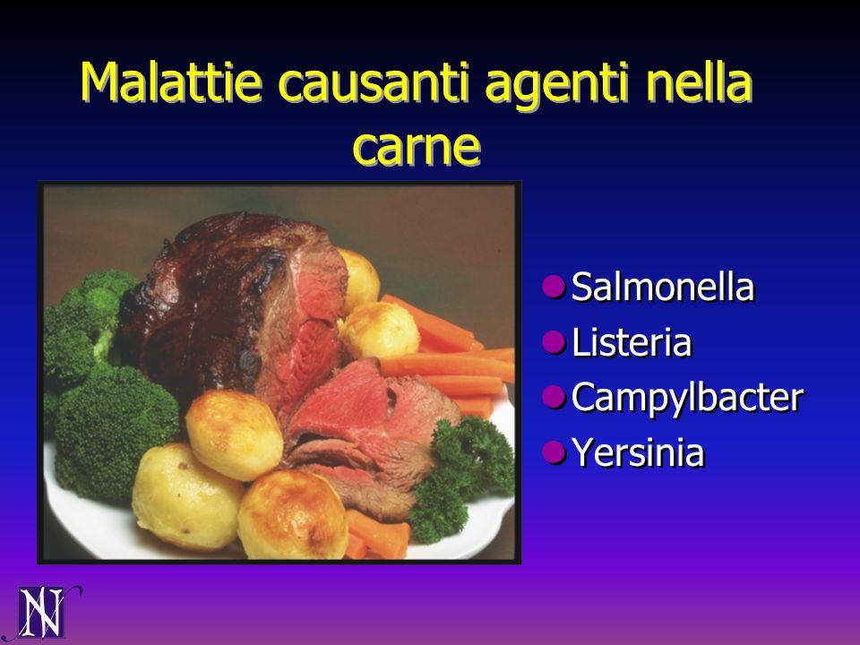 Malattie causanti agenti nella carne Salmonella Listeria Campylbacter Yersinia Salmonella Listeria Campylbacter Yersinia