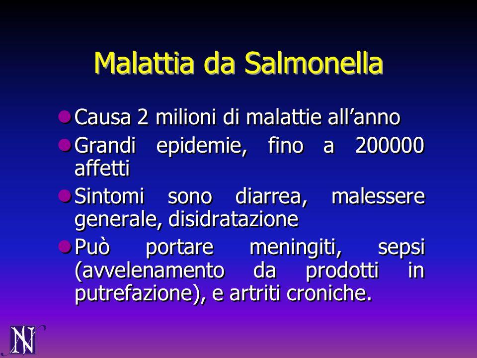 Malattia da Salmonella Causa 2 milioni di malattie allanno Grandi epidemie, fino a 200000 affetti Sintomi sono diarrea, malessere generale, disidrataz