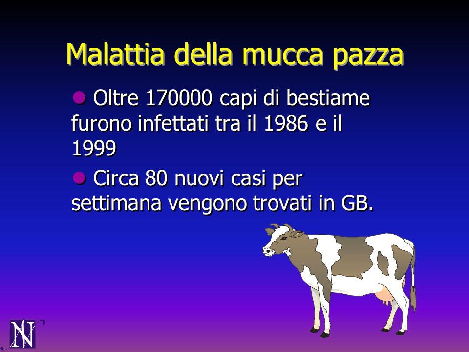 Malattia della mucca pazza Oltre 170000 capi di bestiame furono infettati tra il 1986 e il 1999 Circa 80 nuovi casi per settimana vengono trovati in G