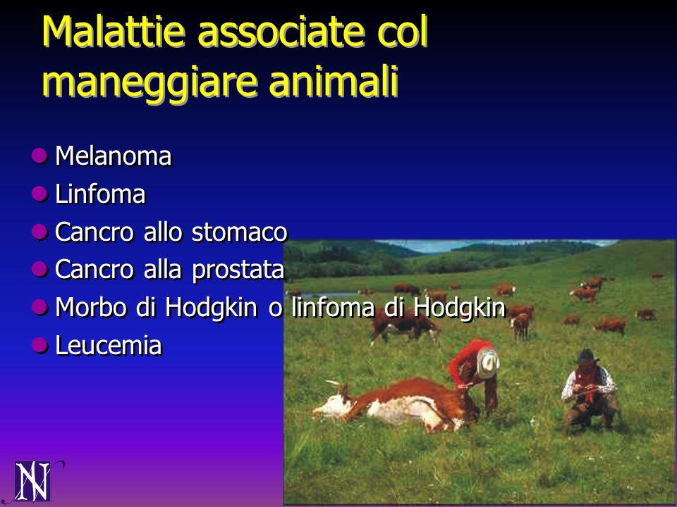 Malattie associate col maneggiare animali Melanoma Linfoma Cancro allo stomaco Cancro alla prostata Morbo di Hodgkin o linfoma di Hodgkin Leucemia