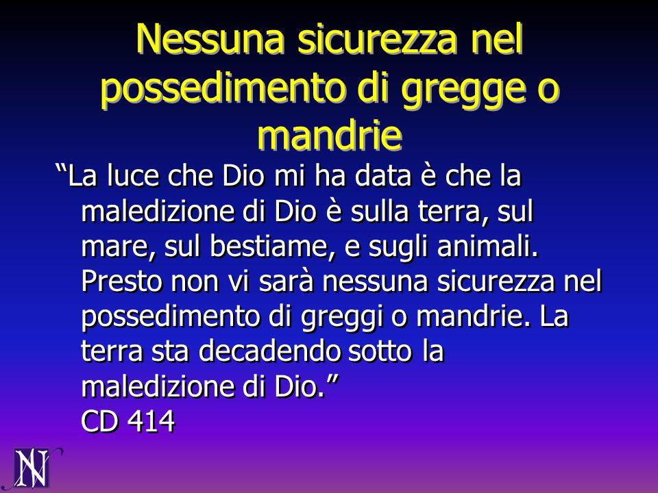 Nessuna sicurezza nel possedimento di gregge o mandrie La luce che Dio mi ha data è che la maledizione di Dio è sulla terra, sul mare, sul bestiame, e