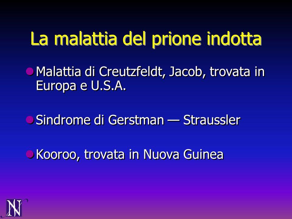 La malattia del prione indotta Malattia di Creutzfeldt, Jacob, trovata in Europa e U.S.A. Sindrome di Gerstman Straussler Kooroo, trovata in Nuova Gui