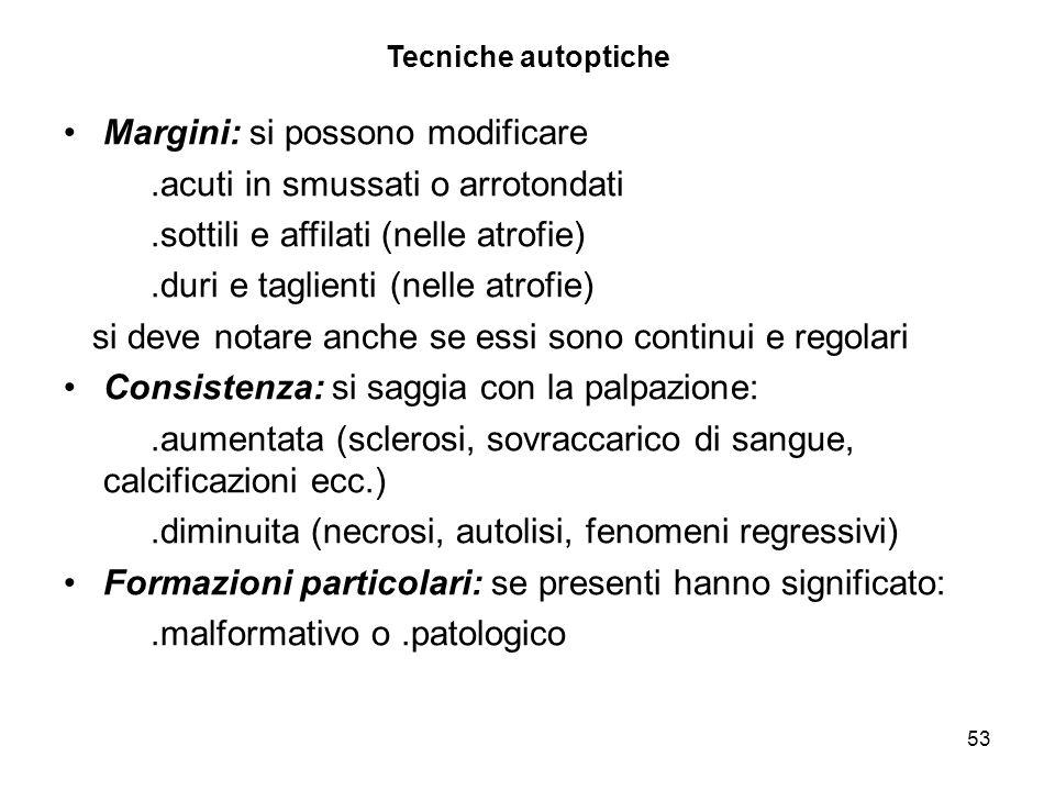 53 Tecniche autoptiche Margini: si possono modificare.acuti in smussati o arrotondati.sottili e affilati (nelle atrofie).duri e taglienti (nelle atrof