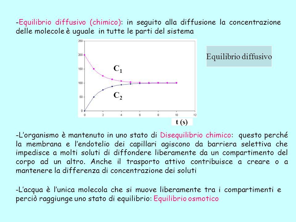 -Equilibrio diffusivo (chimico): in seguito alla diffusione la concentrazione delle molecole è uguale in tutte le parti del sistema Equilibrio diffusi