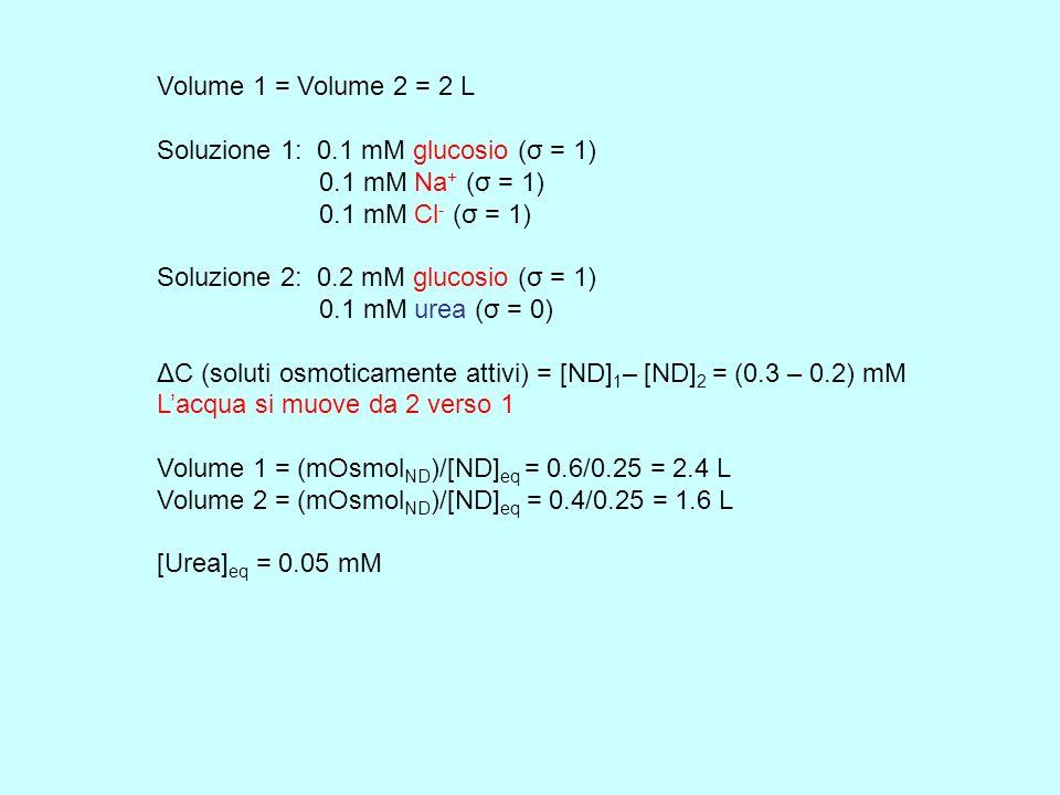 Volume 1 = Volume 2 = 2 L Soluzione 1: 0.1 mM glucosio (σ = 1) 0.1 mM Na + (σ = 1) 0.1 mM Cl - (σ = 1) Soluzione 2: 0.2 mM glucosio (σ = 1) 0.1 mM ure