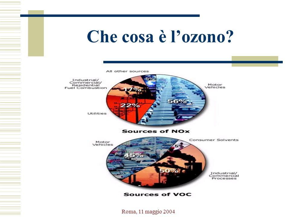 Roma, 11 maggio 2004 Che cosa è lozono?