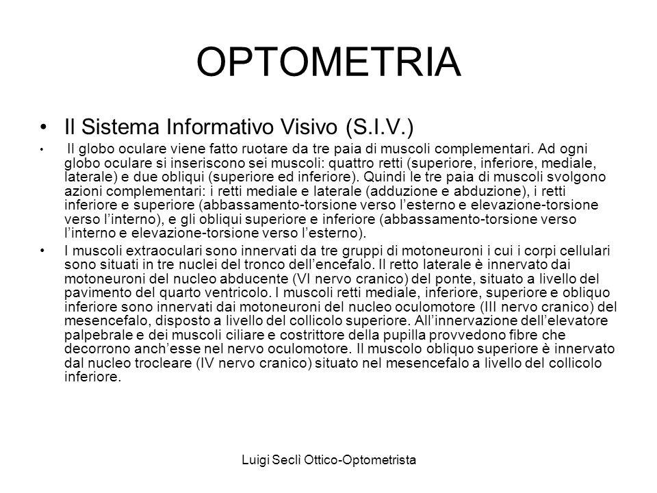 Luigi Seclì Ottico-Optometrista OPTOMETRIA Il Sistema Informativo Visivo (S.I.V.) Il globo oculare viene fatto ruotare da tre paia di muscoli compleme
