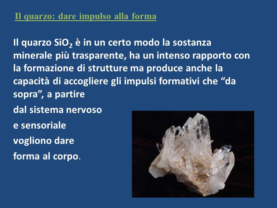 Il quarzo: dare impulso alla forma Il quarzo SiO 2 è in un certo modo la sostanza minerale più trasparente, ha un intenso rapporto con la formazione d