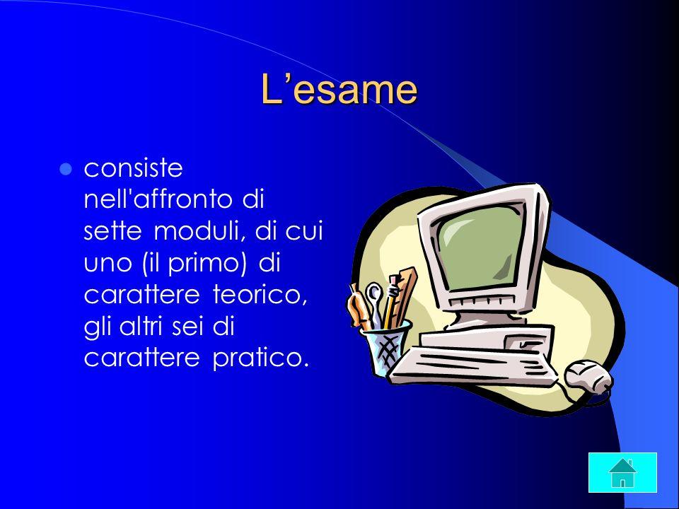 Lesame consiste nell'affronto di sette moduli, di cui uno (il primo) di carattere teorico, gli altri sei di carattere pratico.