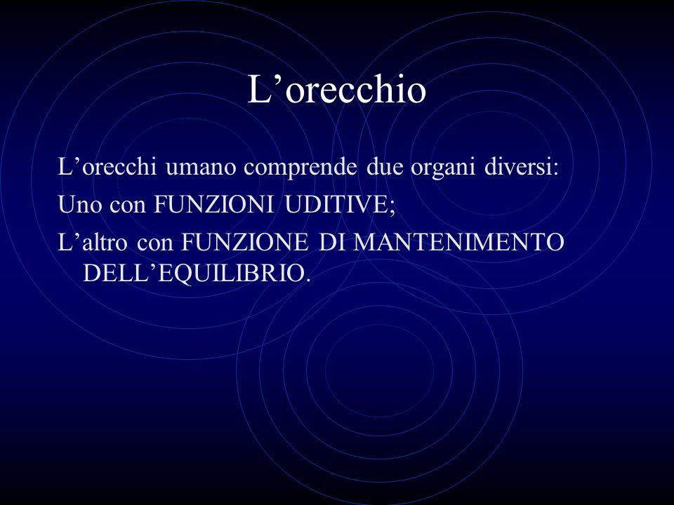 Lorecchio Lorecchi umano comprende due organi diversi: Uno con FUNZIONI UDITIVE; Laltro con FUNZIONE DI MANTENIMENTO DELLEQUILIBRIO.