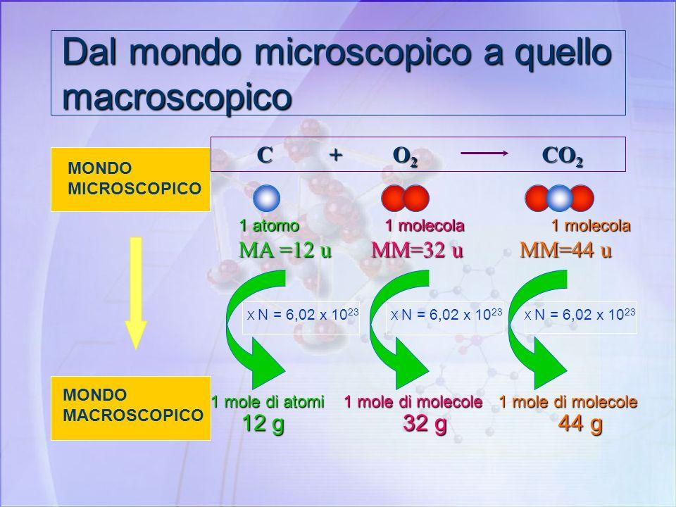 Una mole di molecole Una MOLE di MOLECOLE di un composto è costituita da: UN NUMERO DI GRAMMI UGUALE ALLA MASSA MOLECOLARE DEL COMPOSTO. Una mole dacq